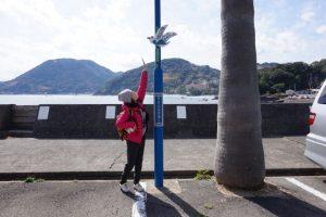 「今井浜海岸通り」の照明柱