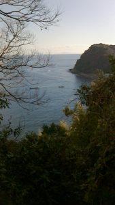 山道から海を見る2