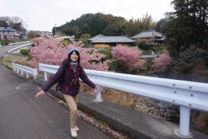 桜の山道1