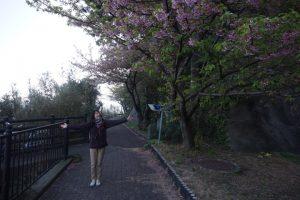 海沿いの遊歩道1