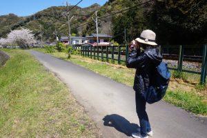 稲生沢川沿いの堤防道路2